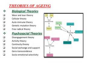theory ageing picture 6