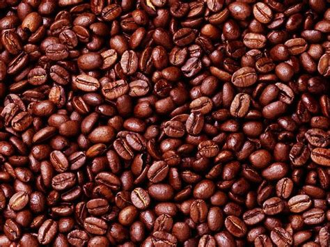 where to buy green coffe robust from uganda picture 5