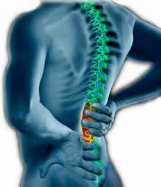 relief of back pain picture 1