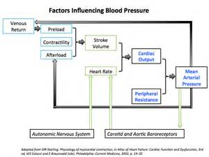 Relationship between cardiac and vascular factor and blood picture 6