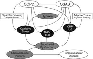 copd and sleep apnea picture 1