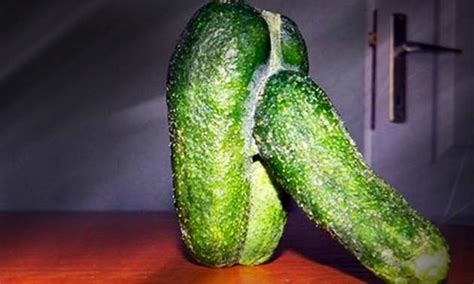 cucumber shaped penis picture 15
