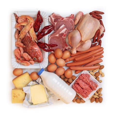 all protein diet picture 3