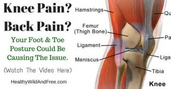 joint pain back pain etc. picture 3