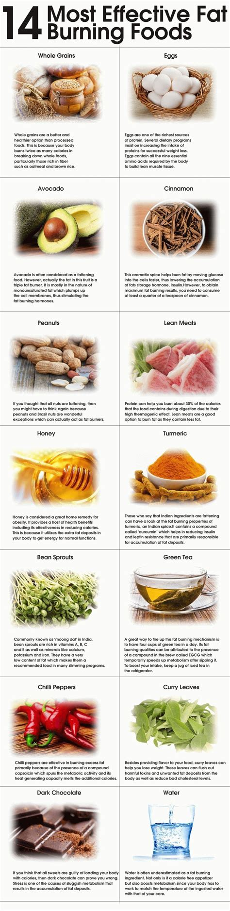 most effective fat burning food picture 2