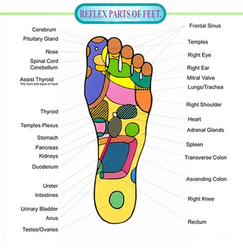 feeet reflexology and sexual arousal picture 5