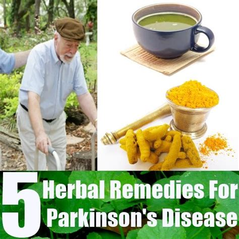 herbal supplements for parkinsons disease picture 1