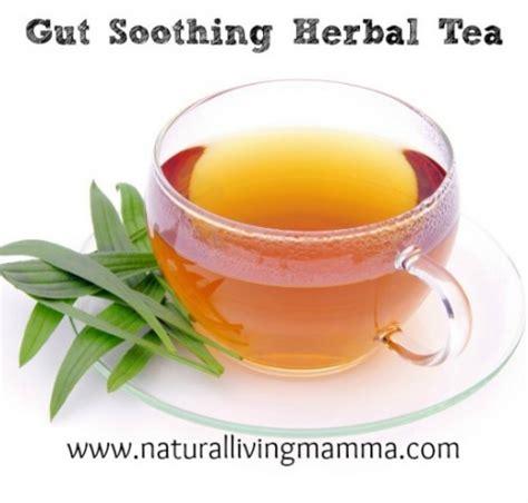 herbal tea maker picture 18