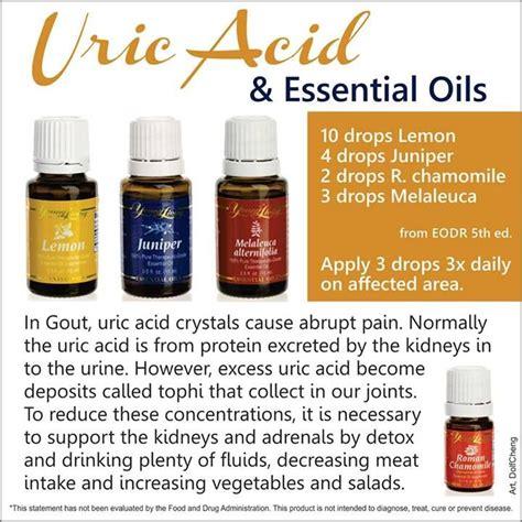 choinyadi churan use in uric acid picture 15