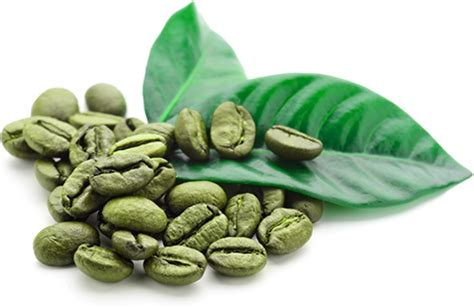 high blood pressure green coffee beans picture 7