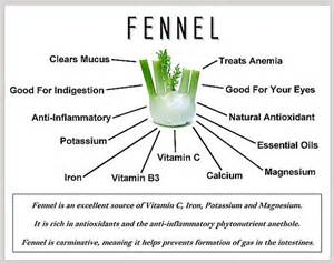 benefits of fennel seeds picture 7