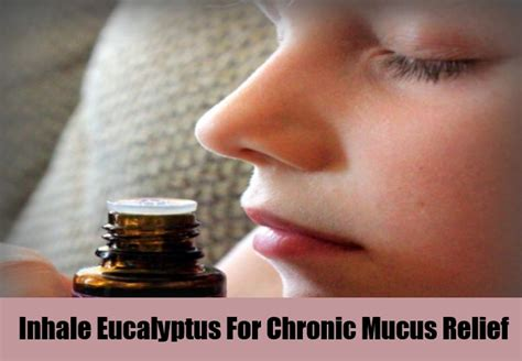 ayurvedic solution to excessive mucus picture 14
