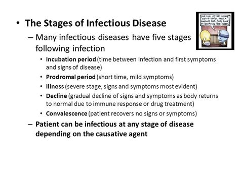stages of microbial infection picture 6