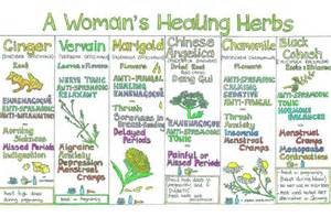Herbal healing remedies picture 3