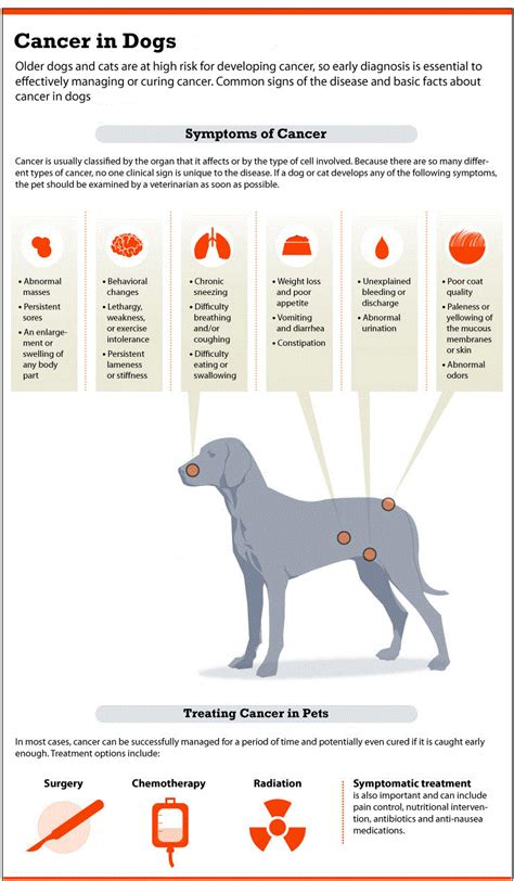 canine thyroid cancer symptoms picture 11