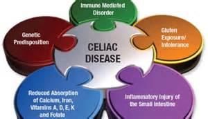 celiac diet picture 11
