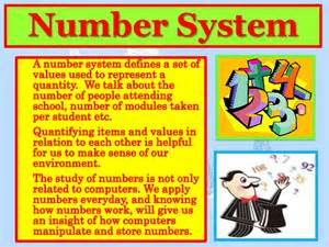 hoodia what is amount in system picture 13