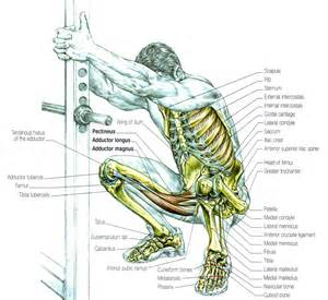 are insures good for muscle recoery picture 6