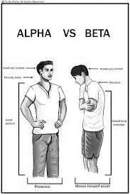 alpha male shop in pretoria picture 7