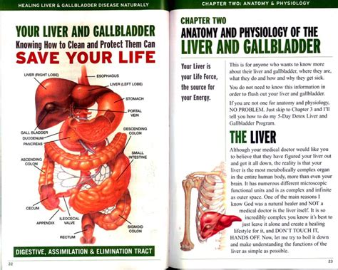 gall bladder and stomach pain and nausea picture 6