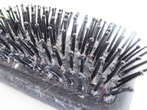 cleaning hair combs picture 11