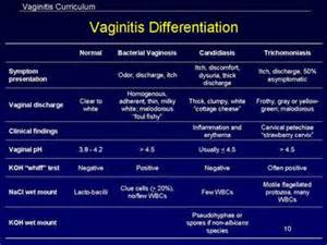 can bacterial vaginitis lead to yeast infections picture 3