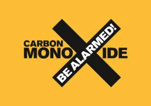 results of burning carbon monoxide picture 5