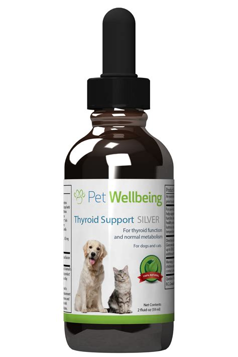 cat thyroid medication picture 15