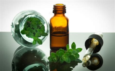 what herbal product help rid the sinus of picture 7
