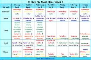 21 day fat flush daily log the formula picture 1