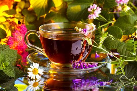 herbal tea to shorten menstrul bleeding picture 5