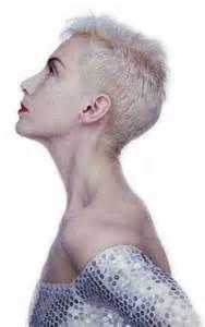 annie lennox hair picture 13