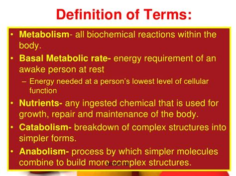 basal rate in diabetics picture 1