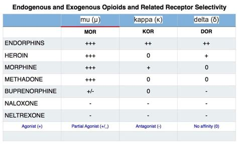 natural ways to stimulate your mu opioid receptors picture 1