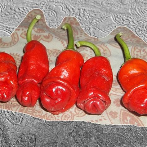 peppers virility picture 3