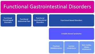 gastrointestinal diseases and disorders picture 7