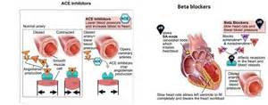 Beta blockers high blood pressure picture 5
