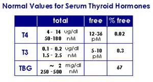 home thyroid free t3 test picture 5