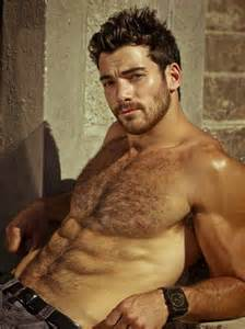 greek hairy big muscle handsome men picture 10