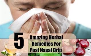 what herbs can stop a post nasal drip picture 6