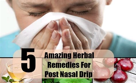 what herbs can stop a post nasal drip picture 12