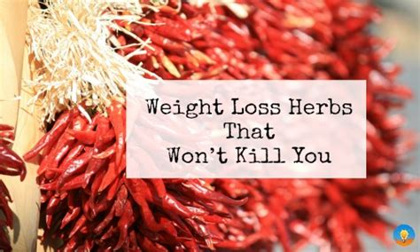 healing,herbs,weight loss success,wellness,whole foods picture 13