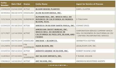 california business name search picture 1