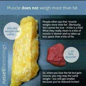 muscle vs fat picture 10