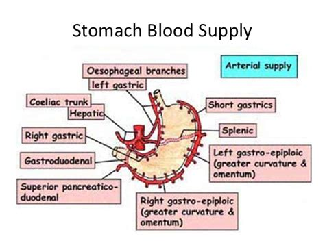 gastrointestinal flu picture 3