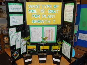 grade 5 science fair projects picture 14