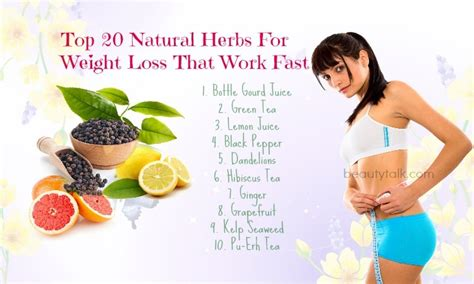 weight loss herbs picture 7