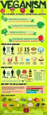 can you lose weight on a high protein picture 5