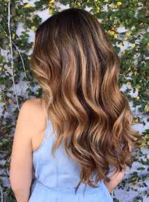 hair highlight example pictures picture 10