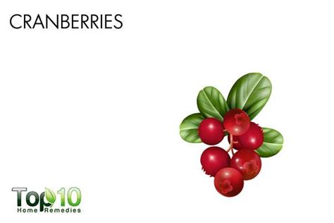 cranberries and bladder infections picture 13
